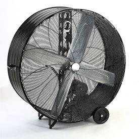 Where to find FAN, FLOOR 36       INV. in Santa Ana